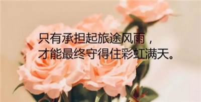 奋斗励志的句子