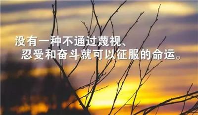 励志的句子